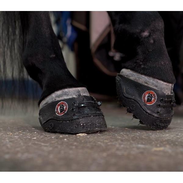 24/7 Jogging Shoe